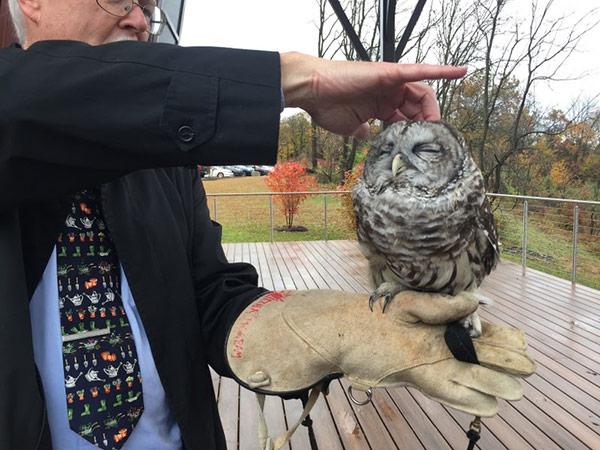 Pastor John showing us an owl at the Audubon Center
